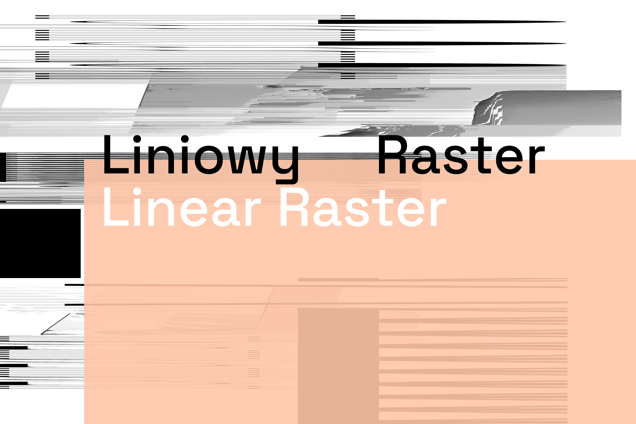 Ewa Doroszenko - Linear Raster, Warsaw - gallery 01